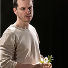 Andrew Scott (Hamlet). Photo by Manuel Harlan