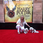 Sonia Friedman with her dogs Teddy and Buddy