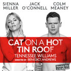 Book Cat On A Hot Tin Roof Tickets