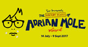 Book The Secret Diary Of Adrian Mole The Musical Tickets