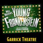 Book Young Frankenstein Tickets