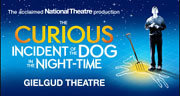 Book The Curious Incident Of The Dog In The Night-Time Tickets