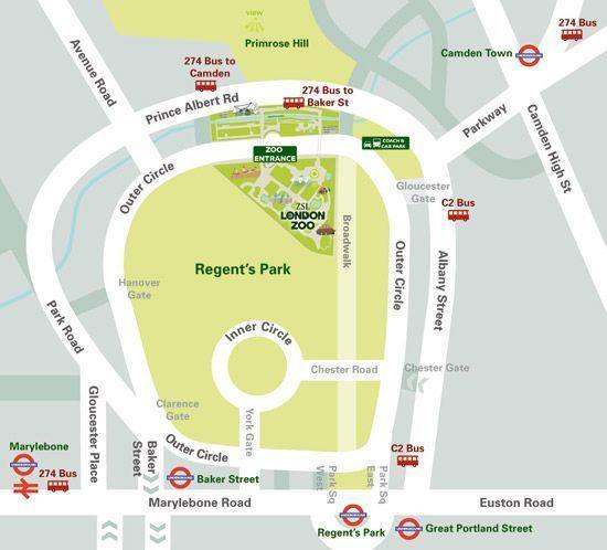 ZSL London Zoo Seating Plan