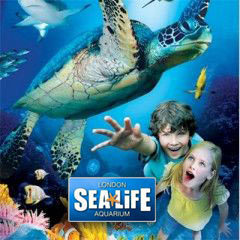 Book SEA LIFE London Aquarium + Entry to the ZSL London Zoo Tickets