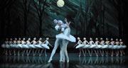 Book Swan Lake - St Petersburg Ballet Theatre Tickets