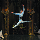 Dmitriy Akulinin in Swan Lake - St Petersburg Ballet Theatre