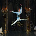 Dmitriy Akulinin in Swan Lake - St Petersburg Ballet Theatre