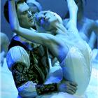 Cast of Swan Lake - St Petersburg Ballet Theatre