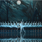 Cast of Swan Lake - St Petersburg Ballet Theatre
