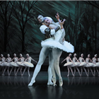 Irina Kolesnikova and the cast of Swan Lake - St Petersburg Ballet Theatre