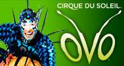 Book Cirque Du Soleil - OVO Tickets
