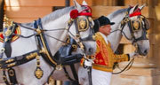 Book Buckingham Palace - The Royal Mews Tickets