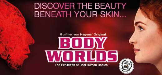 Book Body Worlds  Tickets